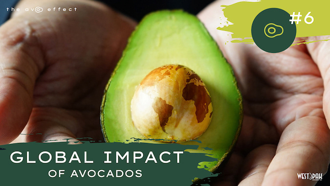 Global Impact of Avocados